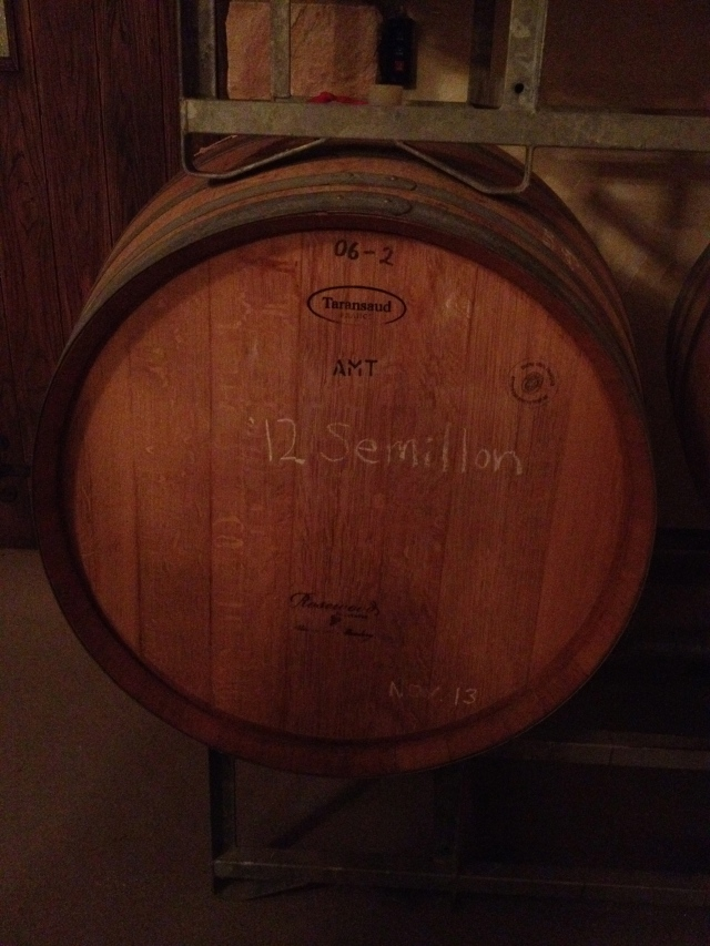 Semillon in Barrel